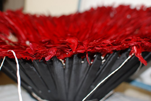 red bird feathers used for craft ideas and making juju hats for wall decoration