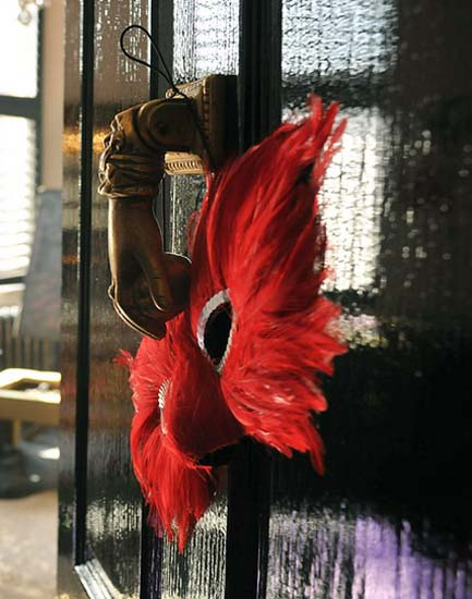 red feathers decorations for a venetian mask used for modern interior decorating