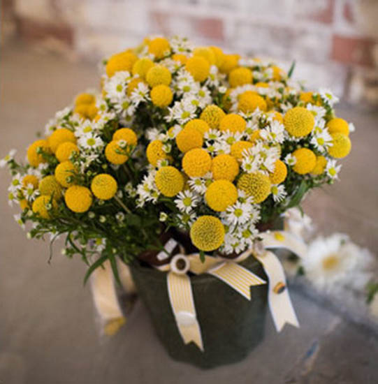 Yellow flower eco craft ideas for floral table decoration white and yellow flowers and ribbons create a table centerpiece to welcome loved ones mightylinksfo Image collections