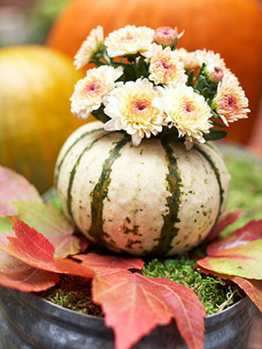 pinkish white mums in gourd vase with green stripes