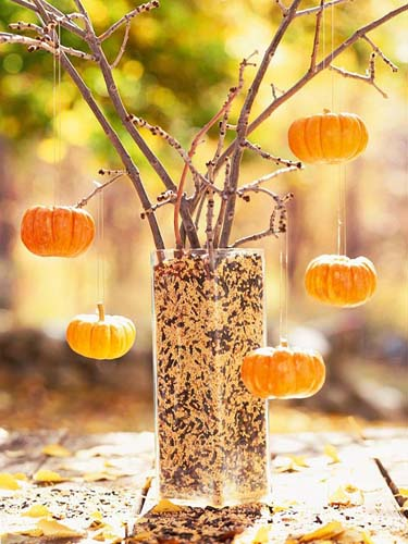 mini pumokins and sunflower seed are cheap Halloween decorations in black and orange color combination