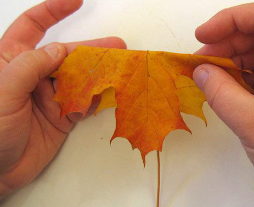 thanksgiving crafts with maple leaves for table decoration