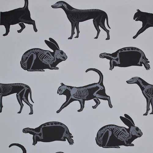 animal shadows and skeletons walpapers for kids rooms decorating in black and white