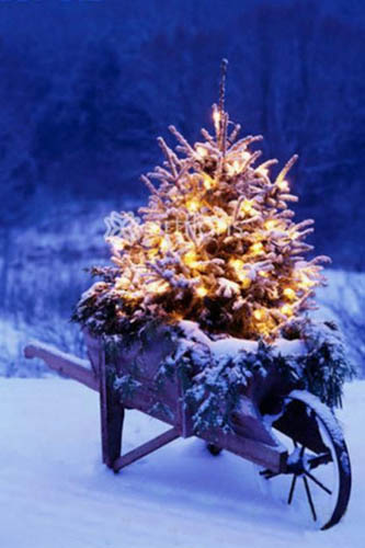 dark blue and gold christmas colors modern christmas decorating ideas - Blue And Gold Christmas Decorations