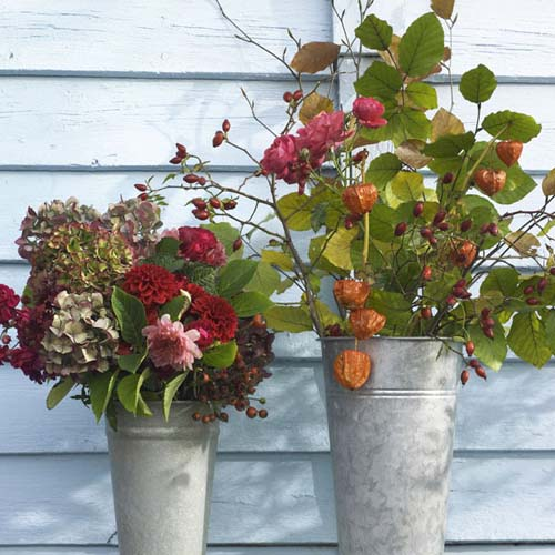 chinese lantern plants and fall flower arrangements for thanksgiving table decorating
