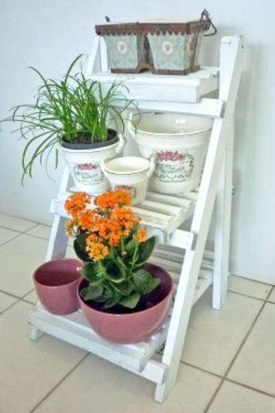 white ladder with blooming plants