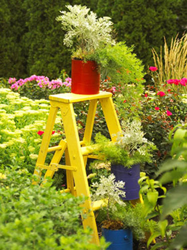 yellow wooden ladder with plants for backyard decorating
