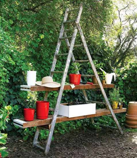 shelves for plants made of ladder