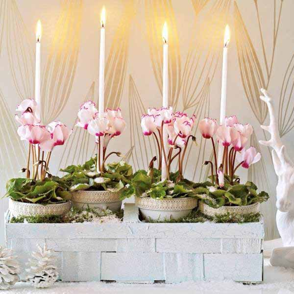 cyclamen christmas table decorations and ideas for new years eve