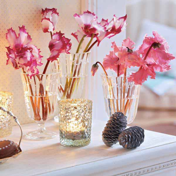 cyclamen christmas table decorations and ideas for new years eve party
