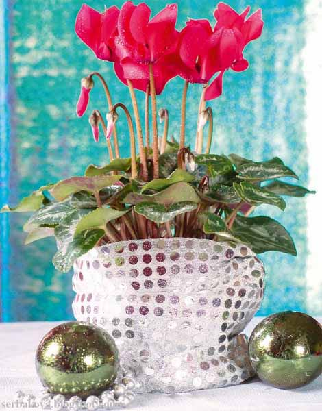 cyclamen table centerpiece ideas
