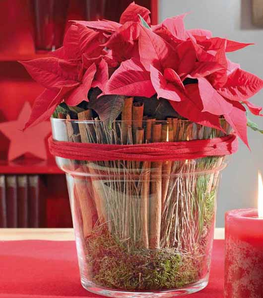 poinsettia christmas table centerpiece with vanila sticks