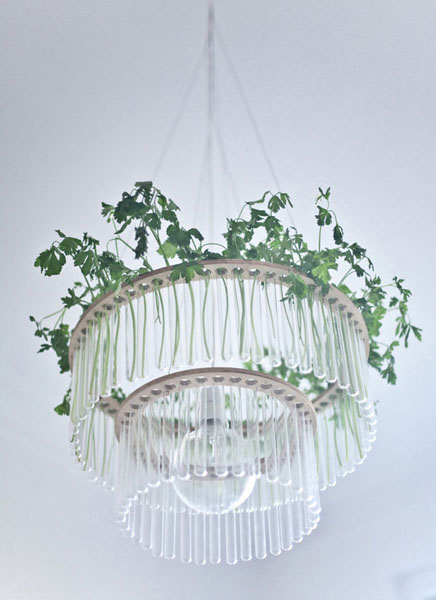 glass chandelier with indoor plants