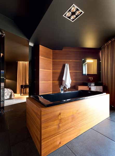 contemporary bathtub decorated with wood