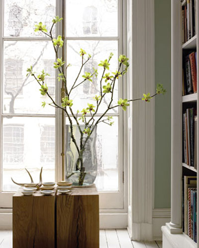 spring branches in glass vase