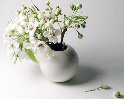decorating with branches with white flowers
