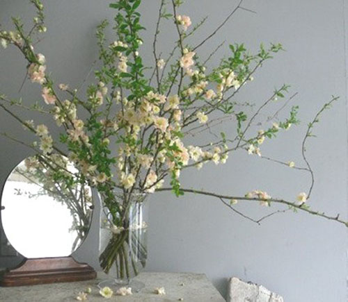 branches with green trees and white flowers in glass vase