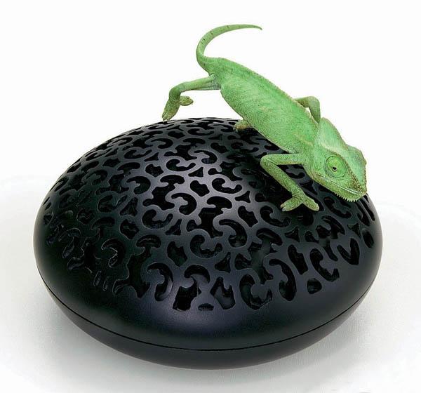 iguana vase