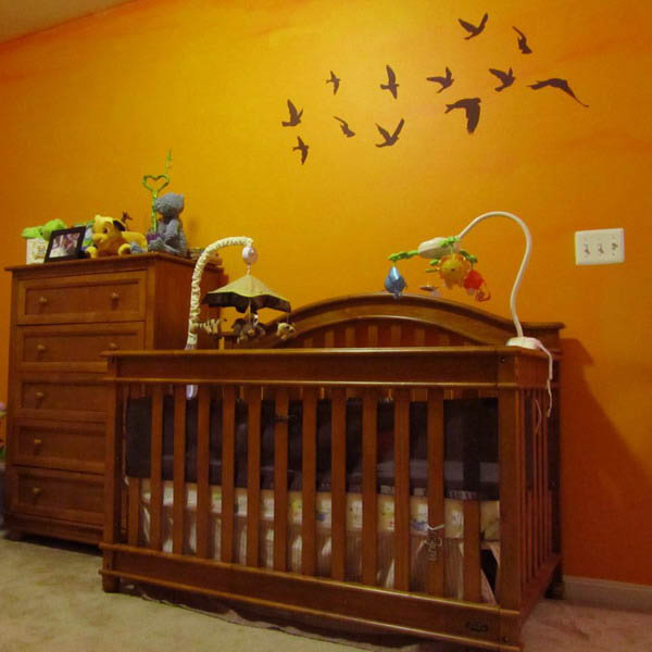 bird images and orange paint for wall decoration