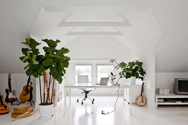 white decorating, wood furniture, green house plants