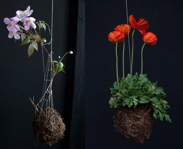 hanging containers with blooming plants