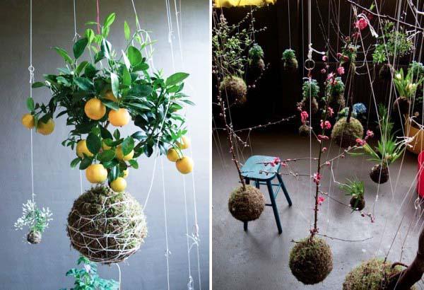 Hanging Garden Ideas the in budget rain gutter Hanging Gardens