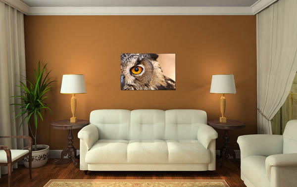 owl poster for living room decorating