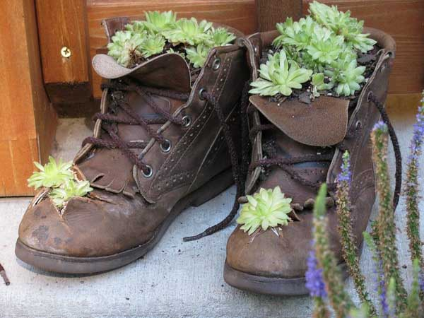 boots with growing plants