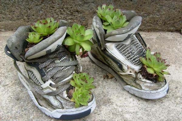 sneakers with small plants