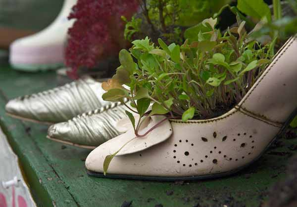 woman shoes with green plants