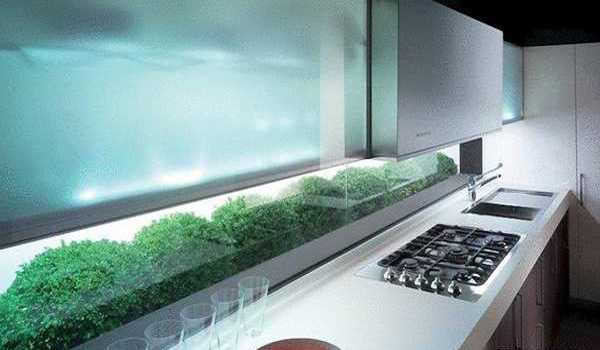 glass wall panels and nature inspired prints for kitchen decorating