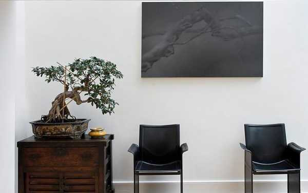 Bonsai asian decor modern interior decorating ideas 3