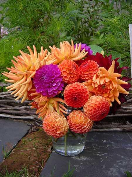 orange and purple floral arrangement