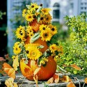 pumpkin tree with sunflowers