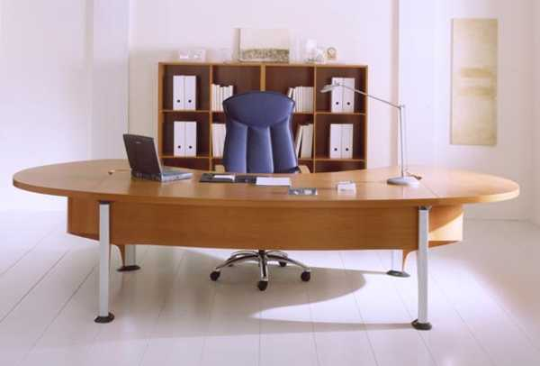 contemporary office interior design with blue leather chair