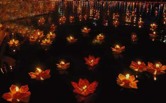 red paper flower floating lights