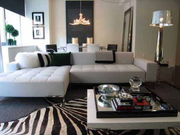 living room decor with zebra floor rug