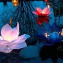 paper flower floating lights