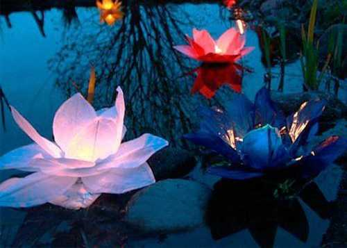 paper flower floating lights