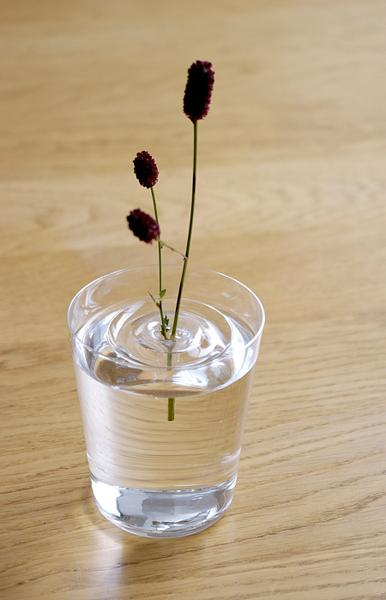 Invisible Ripple Vases For Floating Flower Arrangements And Magic