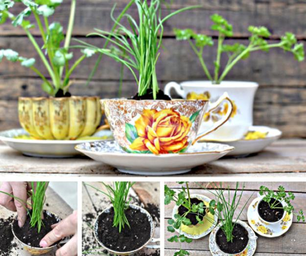 planters made with tea cups