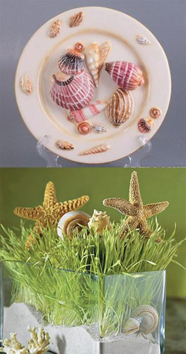 Shell Art And Craft