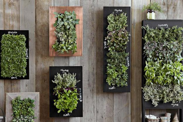 Chalkboard wall planters for vertical garden designs for Wall plants outdoor
