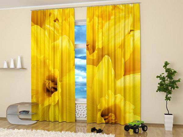 Window Curtains With Colorful Art Prints Of Beautiful