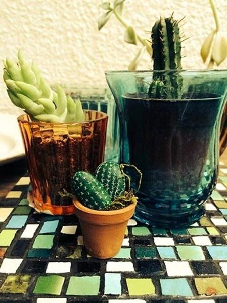 Purple Paint Colors >> Home Decorating with Cacti and Handmade Cactus Home ...