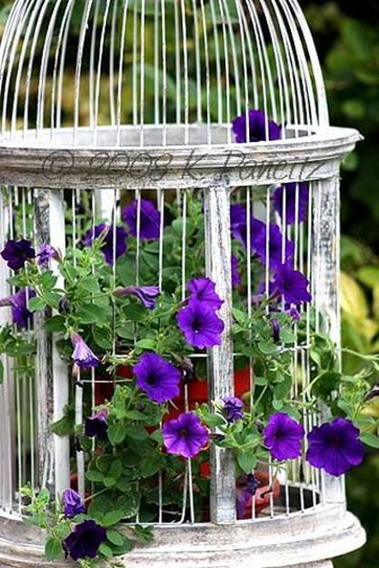 Unique Vintage Decor With Beautiful Flower Arrangements And Birdcages