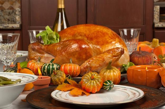 turkey and gourds